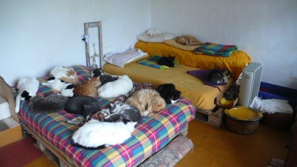 Mon lit est nettement meilleur que l'autre...